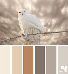 owl tones by kristie