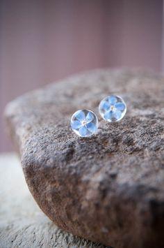 Echte bloem sieraden Vergeet me niet bloem oorbellen Stud