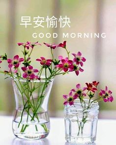 Good Morning Picture, Morning Pictures, Morning Images, Good Morning Greetings, Good Morning Wishes, Chinese Quotes