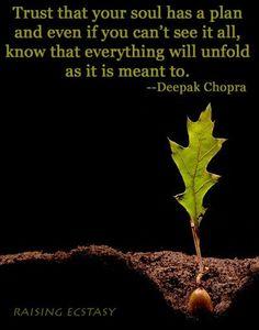 Trust that your soul has a plan... Deepak Chopra
