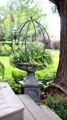 """Have you ever finished a garden project and decided """"I just don't love it?"""" That's ok it's not too late! -Garden Ornaments- Have you ever finished a garden project and decided """"I just don't love it?"""" That's ok it's not too late! Garden Urns, Garden Planters, Topiary Garden, Balcony Gardening, Garden Deco, Container Plants, Container Gardening, Flower Containers, White Gardens"""
