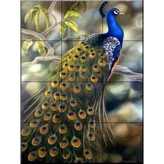 The Tile Mural Store Peacock 12-3/4 in. x 17 in. Ceramic Mural Wall Tile-15-1048-1217-4C - The Home Depot