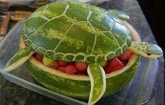 Tartarugas sempre se superam kkkk