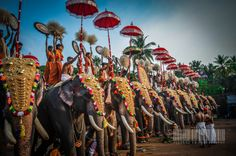 Adoring the festival by Dheeraj ED on 500px