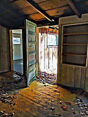 Old Cabins Art - Abandoned Cabin Elkmont  by Rebecca Korpita