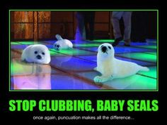 Stop clubbing, baby seals (for real though - please stoppppp!)