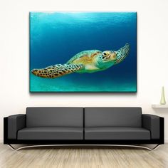 Sea Turtle - Amazing Canvas Prints