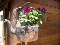 Brewing an interesting hanging garden with that old, seldom used tea kettle.