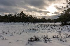 skiing tracks in winter landscape in norway