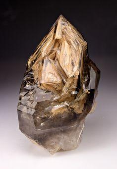 mineralists:  Smoky Elestial Quartz Goboboseb Mountains, Namibia