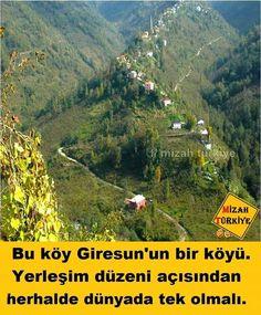Bilgi - #bilgi Wonderful Places, Beautiful Places, Cool Pictures, Cool Photos, Turkey Photos, Marmaris, Antalya, Just Go, Seaside