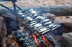 Muikkusaalista nuotiolla Pellon Miekojärvellä Länsi-Lapissa
