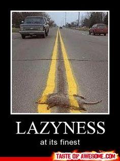 Lazyness :(