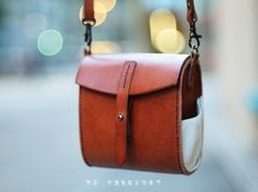 Te Leather Little Camera Bag