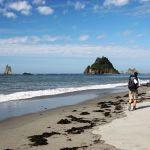 Ten Thru-Hikes that Aren't the Pacific Crest Trail or Appalachian Trail - REI Blog  Continental Divide Trail