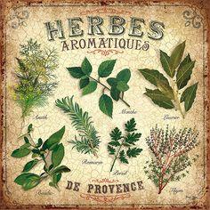 herbes aromatiques hierbas provences cocina postal sepia beige vintage ads © bruno pozzo 2016