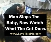 Watch: Cat Takes Action After Seeing Father 'Hitting' Baby (Video)