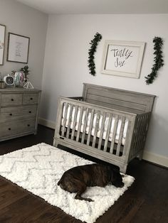 Love this but I would add paper flowers on the wall Baby Nursery: Easy and C. - Love this but I would add paper flowers on the wall Baby Nursery: Easy and Cozy Baby Room Ideas - Baby Boy Nursery Room Ideas, Boys Room Decor, Baby Boy Rooms, Baby Boy Nurseries, Girl Nursery, Nursery Decor, Room Baby, Simple Baby Nursery, Baby Room Ideas For Boys