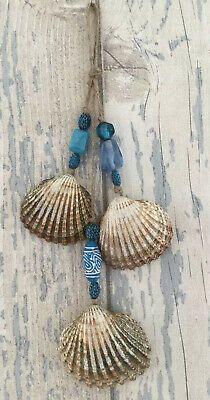 Hanging Glitter Shells, Seashells Set Of 3 With Nautical Beads, Coastal Decor    eBay