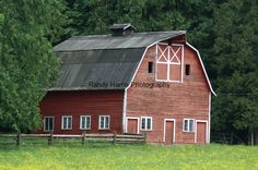 Old red barn on 232nd Street in Langley, B.C. (Randy Harris Photography)