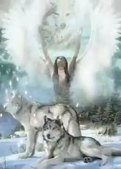 Blue bird and Hiyothea ❤ Native American Wolf, Native American Paintings, Native American Pictures, Madara Wallpaper, Wolf Wallpaper, Fantasy Wolf, Dark Fantasy Art, Native American Spirituality, Wolves And Women