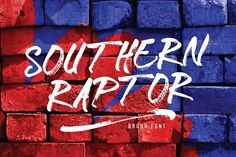 Southern Raptor by Qadry on @creativemarket Pretty Fonts, Beautiful Fonts, Cool Fonts, Script Typeface, Hand Lettering Fonts, Lettering Design, Creative Fonts, Creative Sketches, Business Brochure