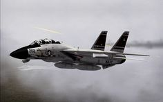 F-14 Tomcat - the nicest markings had to be VF 84 Jolly Rogers although the puking dogs has honorable mention in my book for kewl.