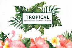 The set of high quality hand painted watercolor tropical leaves and elements images in bright and fresh color palette. Included 6 seamless patterns.