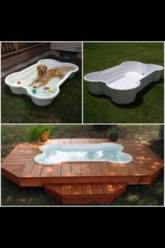 I Love This Idea For Dog