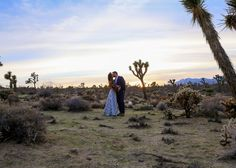 Billy Farrell and Bethanie Brady married in Palm Springs and celebrated their reception at Joshua Tree. Elope Wedding, Wedding Sets, Wedding Dreams, Rustic Wedding, August Wedding, Spring Wedding, Bohemian Wedding Inspiration, Artist Management, Brides And Bridesmaids