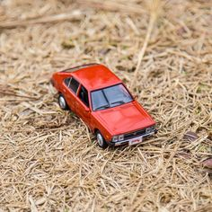 What a warm hug from the withered grass is! - 마른 잔디가 포근하게 안아주는 날 - #bighug #cozy #lovelyday #witheredgrass #dry #winter #park #travel #driving #car #carsofinstagram #diecast #PONY #Hyundai