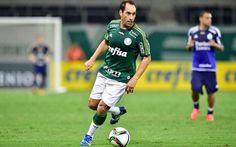 Edmundo, já aposentado do futebol, em jogo amistoso com a camisa do Palmeiras (Foto: Reprodução / Facebook)