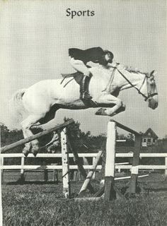 In the late Snowman was all the rage in showjumping. Today show jumpers are mostly Warmbloods, not a former plow horse like Snowman was. Pretty Horses, Horse Love, Beautiful Horses, Hunter Jumper, Snowman Horse, Horse Training Tips, Horse Tips, Horse Saddles, Western Saddles