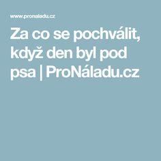 Za co se pochválit, když den byl pod psa | ProNáladu.cz