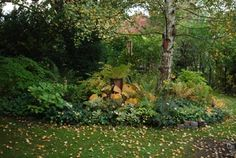 geranium.at - Bilder vom Garten