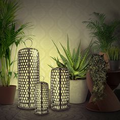 Chicken-Cage Lamp / Oriental Lamp Style Chicken Cages, Building A Chicken Coop, Home Decor Inspiration, Cactus Plants, Oriental, Style, Stylus, Cacti, Cactus