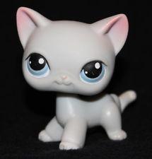 Lps Littlest Pet Shop   Littlest Pet Shop LPS Gray Shorthair Cat #246 Blue Eyes Siamese Light ...