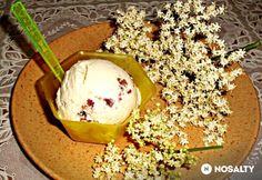 Bodzás-kekszes parfé Ice Cream, Desserts, Food, No Churn Ice Cream, Gelato, Deserts, Dessert, Meals, Yemek