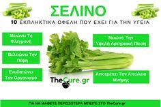 Ποια είναι τα σημαντικότερα οφέλη που έχει το σέλινο για την υγεία. #Διατροφή Celery, Exercises, Herbs, Vegetables, Health, Food, Diet, Health Care, Exercise Routines