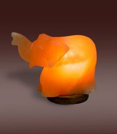 Salt Lamp Hoax Evolution Salt Co  Himalayan Salt Lamp  Cross  Himalayan Salt