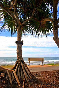 Image of exploration - 3722204 Coast Australia, Queensland Australia, Sunshine State, Sunshine Coast, Journey, Stock Photos, Explore, Architecture, Arquitetura