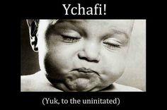 Ychafi !