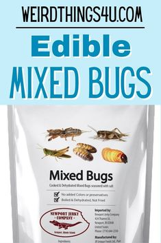 This bag of edible insects includes Grasshoppers, Mole Crickets, Silkworms, Crickets and Sago worms. Net Weight 15 Grams - great unique gift that will bring some laughs and some dares! :) Geek Humor, Mom Humor, Edible Insects, Weird Food, Unique Recipes, White Elephant Gifts, Worms, Family Humor