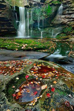 Elakala Autumn black waterfalls state park, West Virginia.