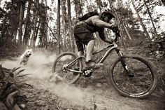 Dan Barham :: Professional Photography, Mountain Bike and Outdoor :: Trail :: Brevard County, NC