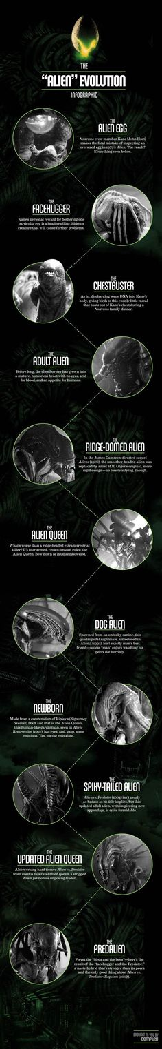 This is fantastic- The Alien Evolution