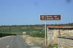 Mersault, Puligny-Montrachet, Beaune, Hotel-Dieu 043
