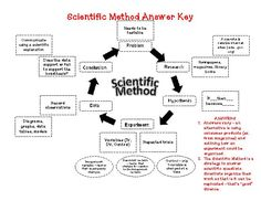 Scientific Method Worksheet College - scientific method worksheet college with… …