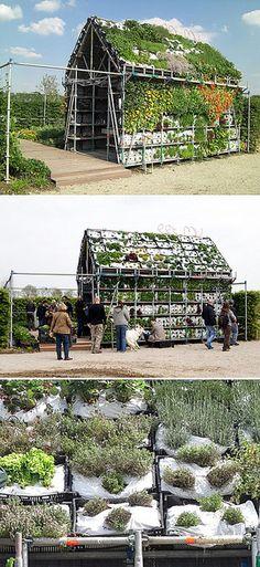 eathouse telhado verde - horta