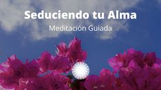 Respiration Yoga, Chakras, Reiki, Ps, Quotes, Meditation For Beginners, Celiac Plexus, Negative Thoughts, Quotations